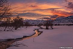 Sunset Fields Heber 022519 8535