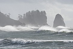 La Push Waves 102916 8659