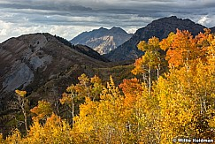 Timp Cascade Autumn 100216 2