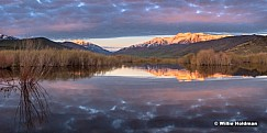 Timpanogos Deer Creek Reflection 040216 20x40