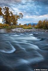 Provo River Cottonwoods 101917 4
