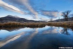 Reflection Pond Heber 112216 6