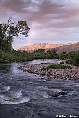 Rainbow Deer Provo River 090319