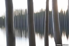 Aspen Lake Abstract 060518 9499