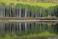 Aspens Reflection 062519 6167