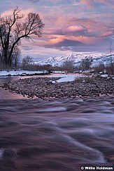 Provo River Timp Purples 022719 8737