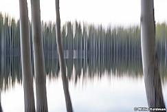 Aspen Lake Abstract 060518 9508