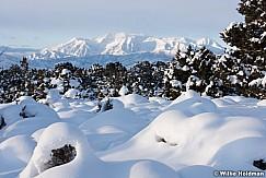 Snowy Timpanogos Heber 121525 2