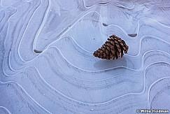 Pine Cone Ice 021316 3257