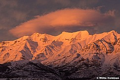 Timpanogos Yellow Sunset 012019 5x7