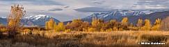 Cascade Timpanogos Yellows 102218 3418
