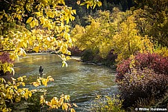 Fly Fishing Provo 101216 3772 4