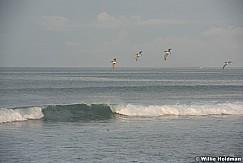 Punta Del Burro 062316 8236