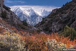 Snow Fall Nebo 101613 2485 2
