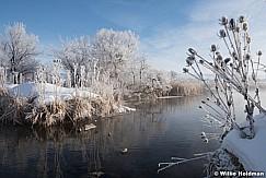 Hoar Frost Pondv012316 0832