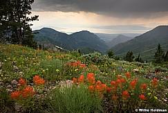 Painbrush Utah Valley 071117 21