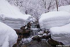NorthFork Winter Creek 030319 9030