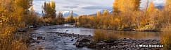Yellows Provo River 18x60