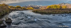Provo River Fall Cottonwoods 103115