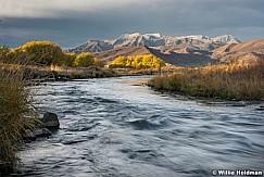 Silver Provo River Timp 103115 1377 3