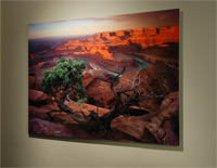 Metal Print Option for Willie Holdman Photographs