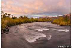 Autumn Yellows Provo River 101116 3356a