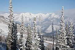 Wasatch Frosty Trees 122915 7653 2