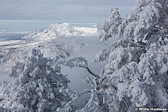 Frosty Pines Snowbasin 011217 0385