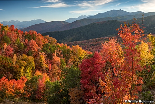 Wasatch Autumn Red layers 091716