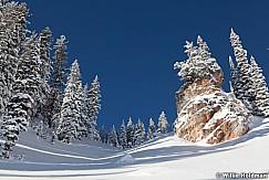 Box Elder Peak Snow Pines 112510 128