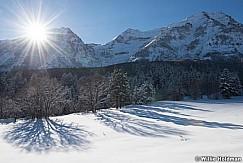 Timpanogos Winter Meadow 010617 9748 4