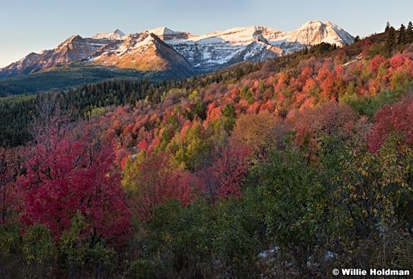 Timpanogos Autumn Snow 092416