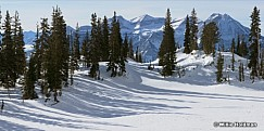 Timp Glance Winter 021813