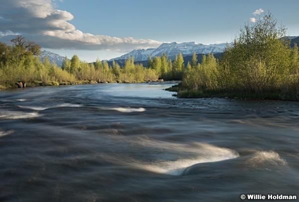 Provo River Spring Greens 051016 3856