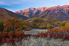 Timpanogos Autumn Oak Sunset 101216