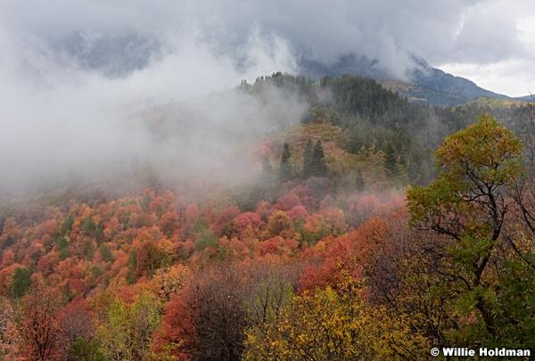 Maples Fog Wasatch 092216 5087 4