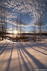 Long Aspen Winter Shadows 021718 2451