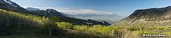 Timpanogos Foothills Utah Valley 051517
