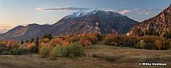 Autumn Colors Timp 100117 7131