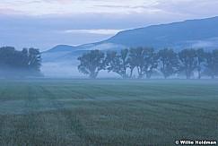 Timpanogos Heber Fog 091513 2192