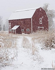 Red Barn Snowing 111015 3