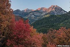 Timpanogos American Fork Canyon 091916 4