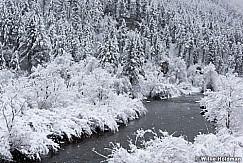 Provo River Snowflakes 022217 6245