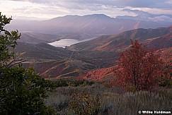 Red Maple Hillside 100219 4840