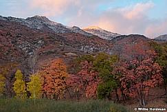 Maples Lone Peak 102520 9309 3