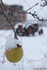 Tractor Snow Orchard 122515 1382