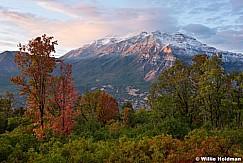 Timpanogos Autumn Dusting 092217 2637 2