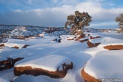 Capitol Reef Snow 012621 9259 3