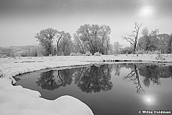 Pond Reflection WinterBW 041513 8659