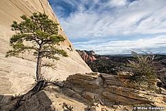 Lone Tree Slickrock 042617 9170
